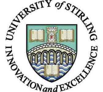 Стерлингский университет